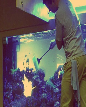 Top-class Aquarium Maintenance Service